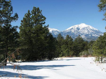 Whispering Pines Ranch : Aguilar : Las Animas County : Colorado