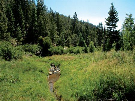 Rancho Cañada : Guadalupita : Mora County : New Mexico