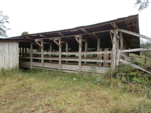Remote 40 Ac Cattle Farm -river : Tuciurrique De Cartago : Costa Rica