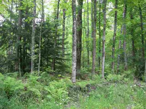 24399 Hillside Road  Mls 1077489 : Covington : Baraga County : Michigan