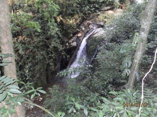 79 Ac Riverfront, Pasture, Woods : Orosi Valley : Costa Rica