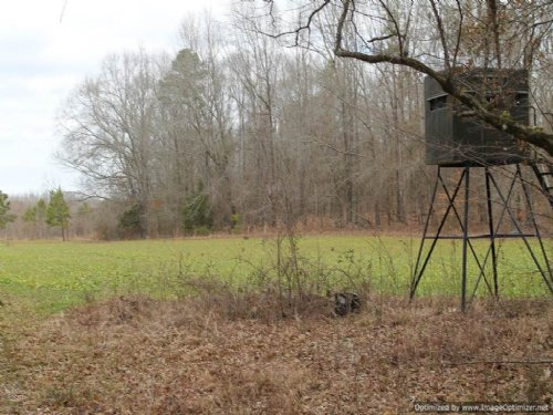 186 Acres : Utica : Hinds County : Mississippi