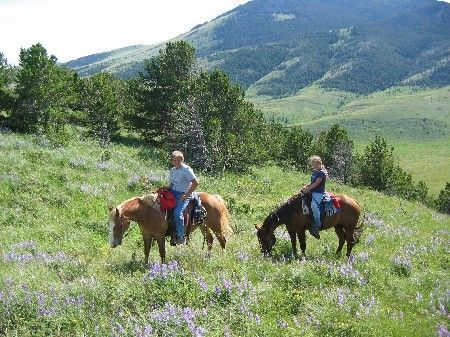 Sweet Grass Hills Ranch : Chester : Liberty County : Montana
