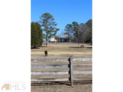 Horse Lovers Dream : Covington : Walton County : Georgia