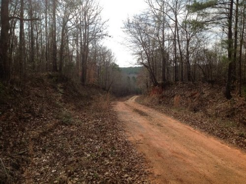Bennett Tract : Marion : Perry County : Alabama