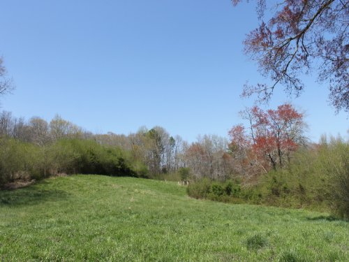 16.87 +/- Acres : Bowdon : Carroll County : Georgia