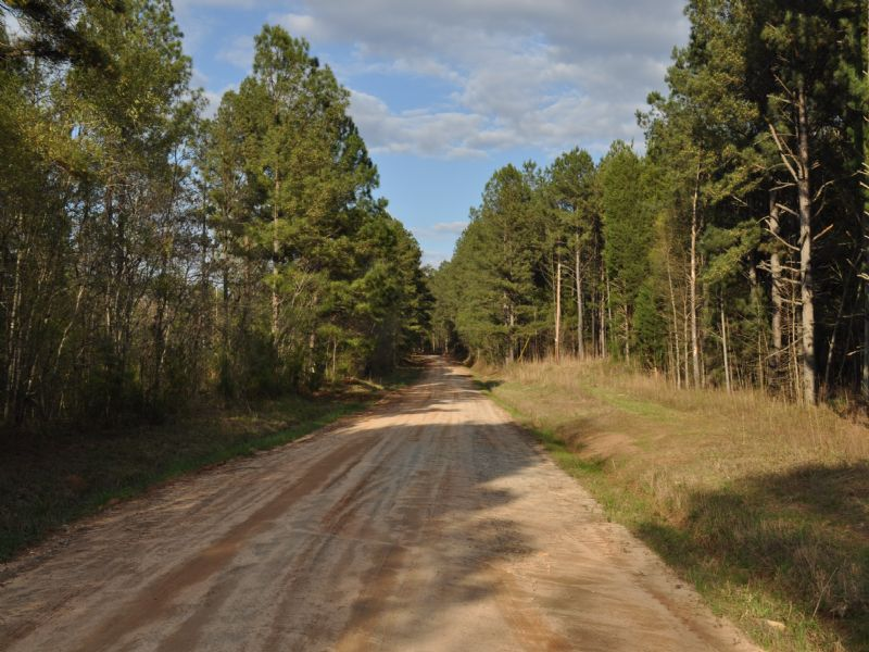 Wolf Creek Tract : Watkinsville : Oglethorpe County : Georgia