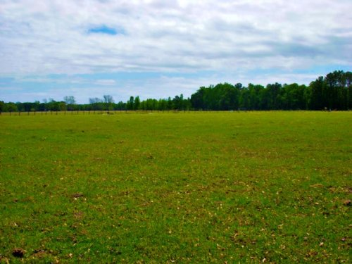 Lanes Creek Farm : Brooklet : Bulloch County : Georgia