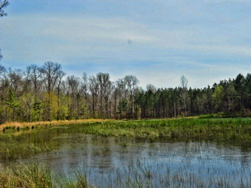 Recreational Tract : Gaffney : Cherokee County : South Carolina