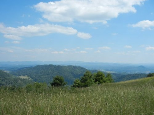 Mountain Top Property W/views : Independence : Grayson County : Virginia