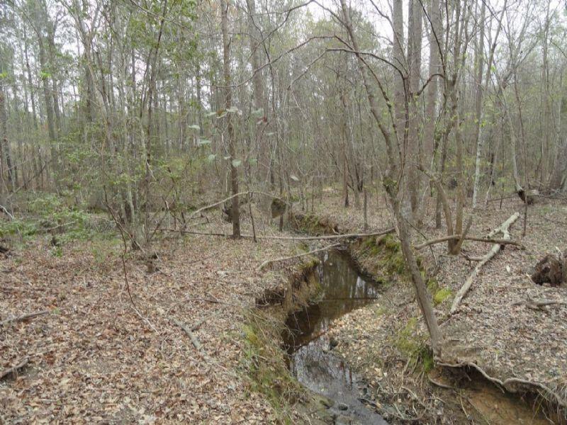 Hwy 28/221 : McCormick : McCormick County : South Carolina