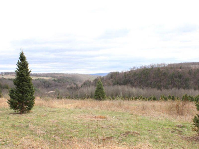 65 +/- Acres Of Land : Bloomsburg : Columbia County : Pennsylvania