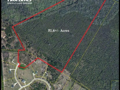 51.6 Acre Private Country Homesite : Woodbine : Camden County : Georgia