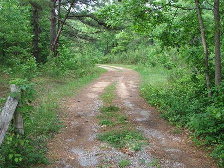 27 Acres On Highway 28 : Demopolis : Marengo County : Alabama