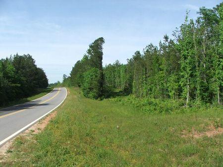 54 Acres On Highway 25 : Thomaston : Marengo County : Alabama