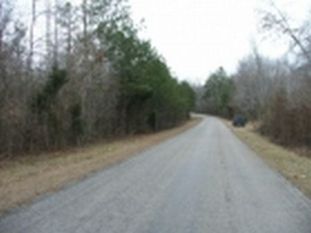 New Price  North Perry 13.3 Acres : North Perry : Perry County : Alabama