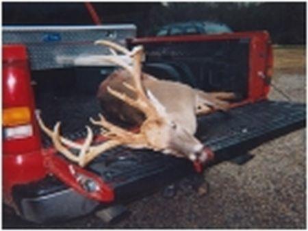 115 Acres Of Great Hunting : Moundville : Tuscaloosa County : Alabama