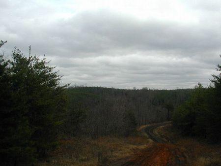 640 Acres- A Full Section : Bull City : Tuscaloosa County : Alabama