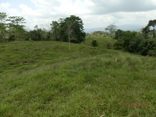 Scenic View 18 Acre Cattle Ranch : Turrialba : Costa Rica