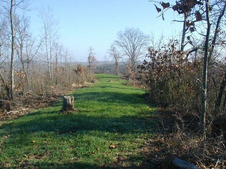119 Acres : Moundville : Hale County : Alabama