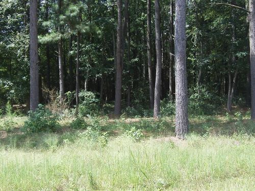 Deep Lake Farms - 30.63 Acre Lot : Shady Dale : Jasper County : Georgia