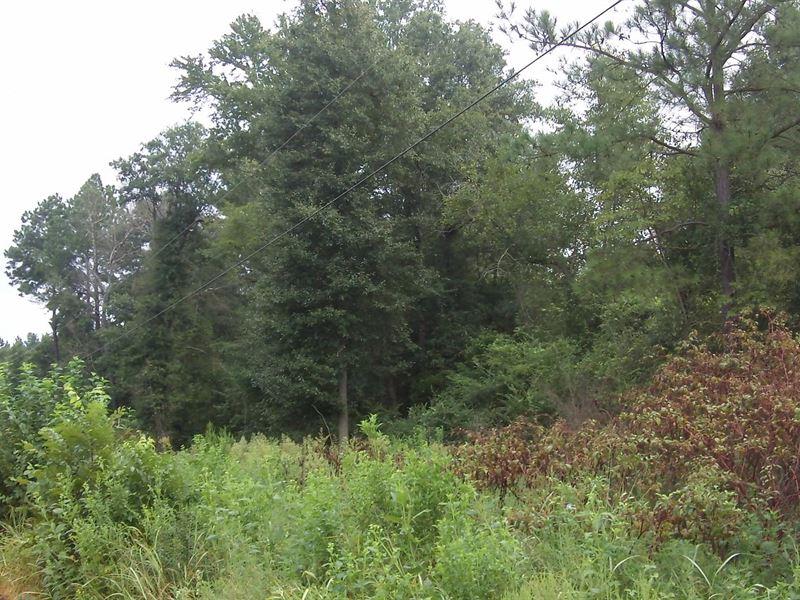 Keysville Farms, 23.86 Acre Lot : Keysville : Burke County : Georgia