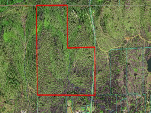 Affordable $1,639 Per Acre : Ashville : Saint Clair County : Alabama