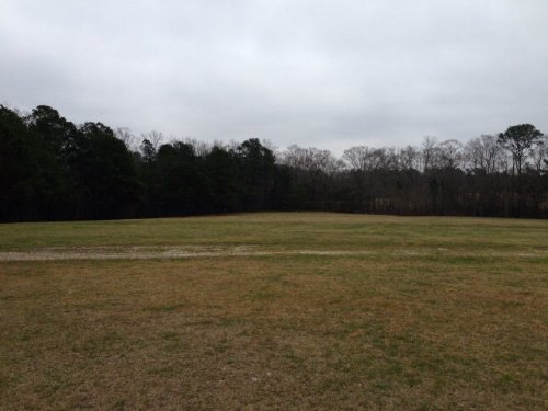 57 +/- Acres : Goshen : Pike County : Alabama