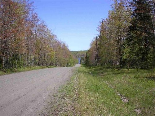 Tbd Biltonen Rd, Mls# 1080038 : Lanse : Baraga County : Michigan