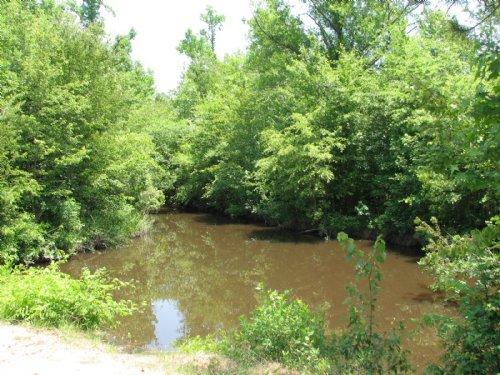 Rocky Creek : Vidalia : Toombs County : Georgia