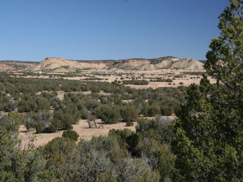 Sierra Mountain Ranch : Saint Johns : Apache County : Arizona