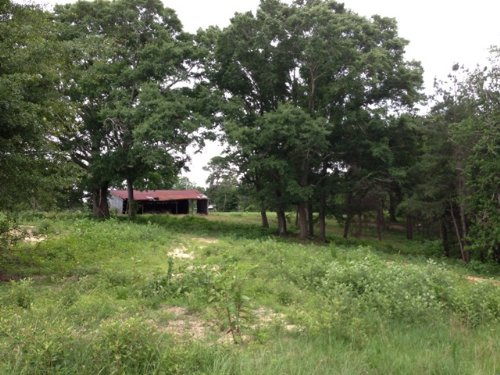 15 +/- Ac With 2 Ponds : Troy : Pike County : Alabama