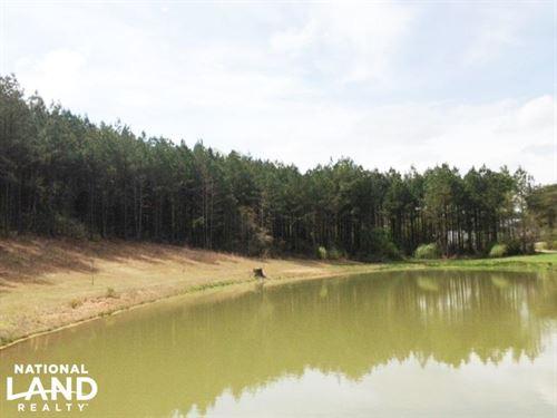Estate Acreage With Pond : Delta : Clay County : Alabama