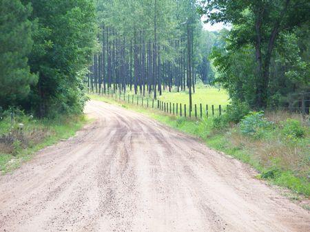Gentleman's Farm, Hunting Place : Sasser : Terrell County : Georgia