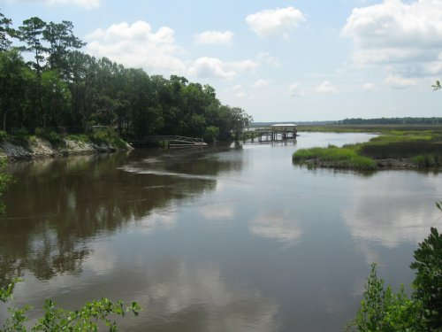 85+/- Acres High Bluff River Front : Woodbine : Camden County : Georgia