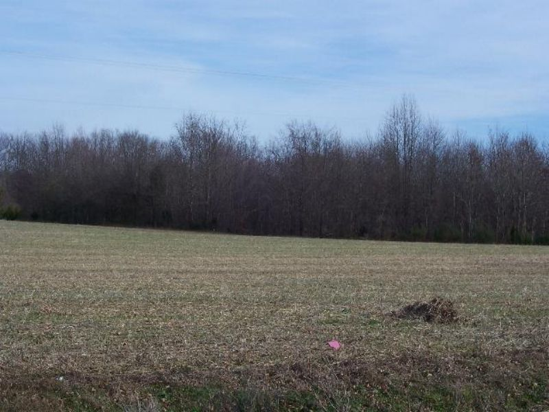Cumberland Farm : Cumberland : Cumberland County : Virginia