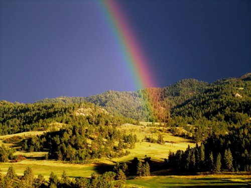 Wolf Mountain Ranch : Colstrip : Big Horn County : Montana