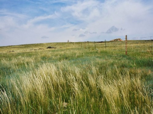 Flat Top Ranch : Wheatland : Platte County : Wyoming