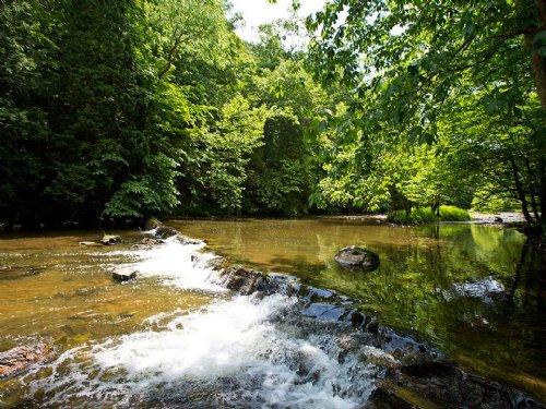Virginia Gentleman's Farm : Saltville : Smyth County : Virginia