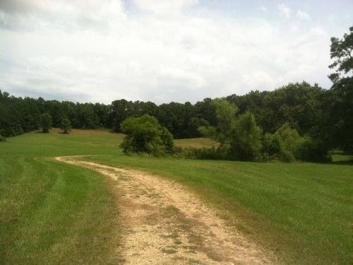 Gentleman Farm - 78 Acres W/barn : Moody : Saint Clair County : Alabama