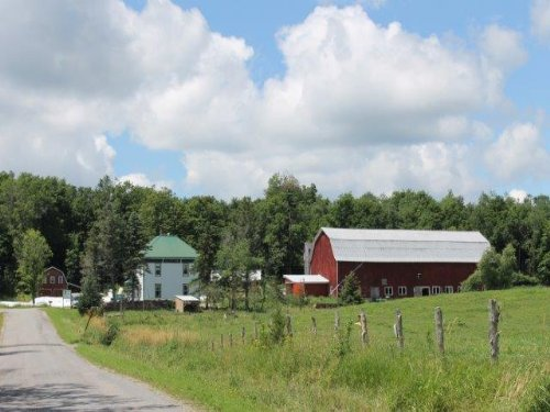 Certified Organic Dairy Farm : Hammond : St. Lawrence County : New York
