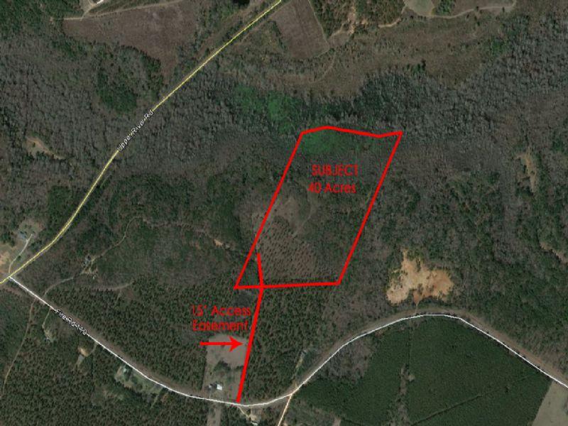 Hunting Property In The Heart Of Ga : Hawkinsville : Pulaski County : Georgia