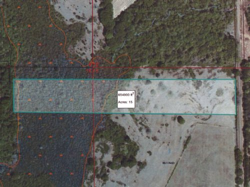 15 Ac Abundant In Deer & Turkey : Banks : Pike County : Alabama