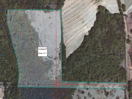 31 +/- Ac On Co Rd 5523 : Banks : Pike County : Alabama
