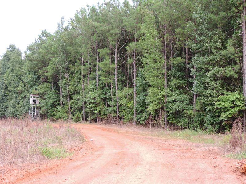 Oliver Greene Tract : Gray : Jones County : Georgia