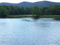 126+ Acres With Beautiful Pond : Sandy Level : Pittsylvania County : Virginia