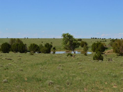 L & L Stone Ranch : Kim : Las Animas County : Colorado