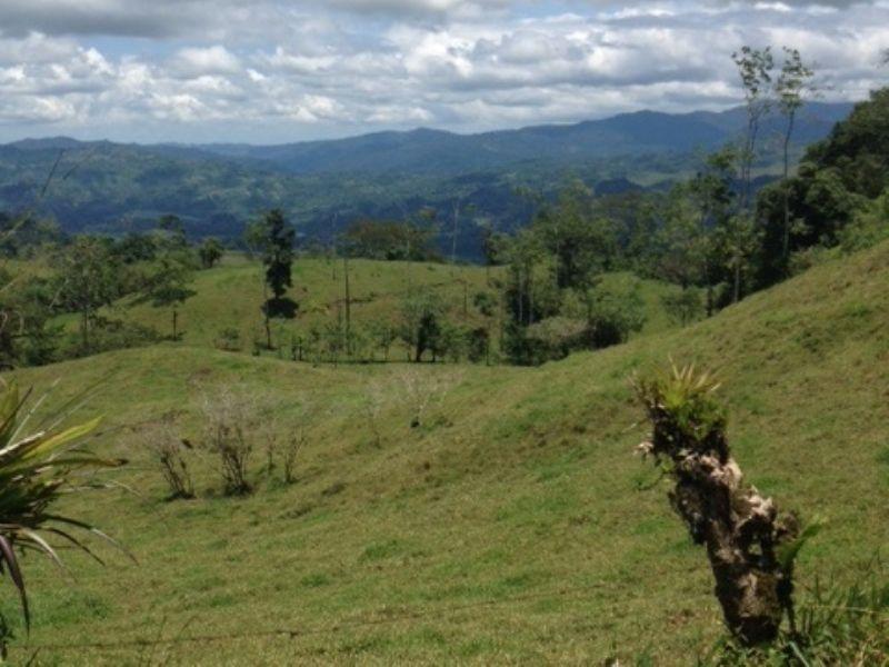 Drastically Reduced 16.5 Ac Farm : Turrialba : Costa Rica