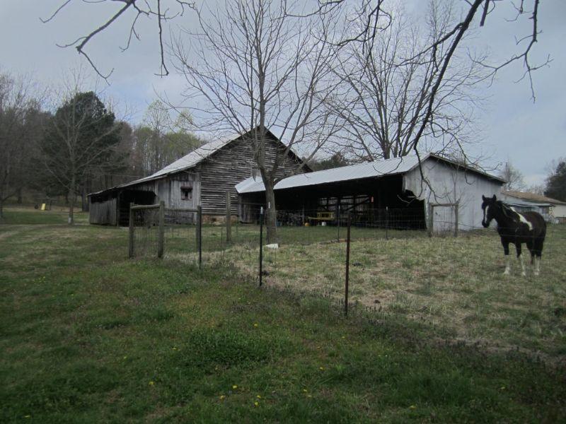 Seventy Six Acres Of Pasture Land : Vinemont : Cullman County : Alabama