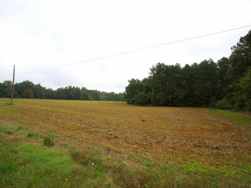 100 Acres - Multiple Parcels : Amelia Court House : Amelia County : Virginia